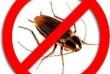 СЭС-Инспекция - служба уничтожения насекомых и грызунов