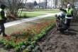 Догляд за зеленими насадженнями робота у Польщі