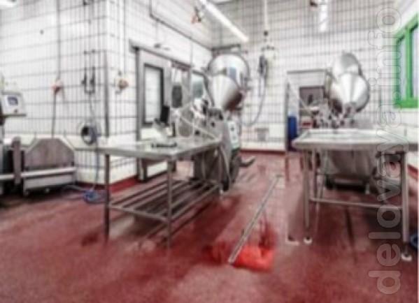 Промышленные полы  - для  пищевой промышленности  от Чешской компании