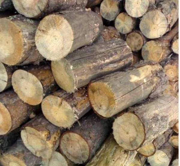 Дрова дуб от 5 м/куб. Уголь каменный,длиннопламенный, отличного каче