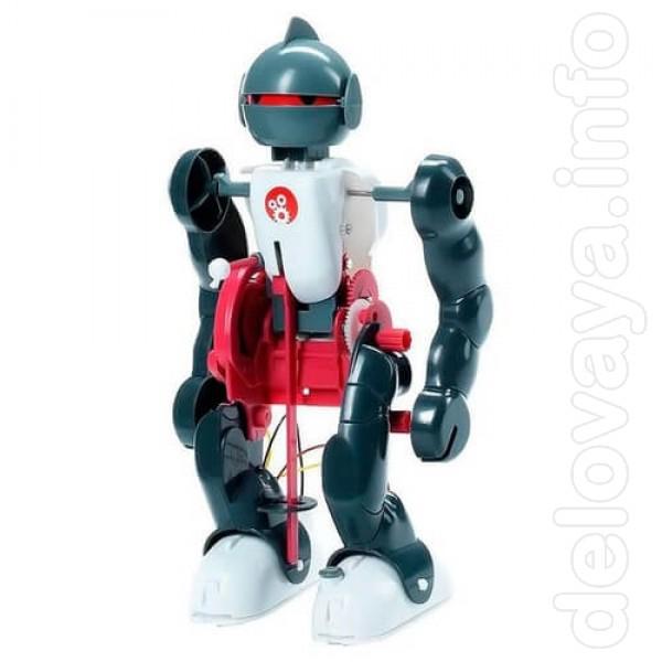 АкроБот – это конструктор и целостная игрушка одновременно. Чтобы пол