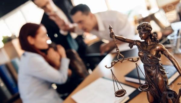 Расторжение брака (развод), раздел имущества, лишение родительских пр