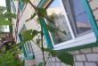 на территории два строения дом 74,4 кв.м и рабочая кухня 23,4 кв.м. Г