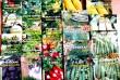 Продаю семена зелени и пряных растений ТМ Велес по розничным ценам. С