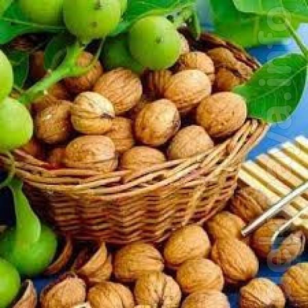 Продам очищенный грецкий орех 5 кг - 500 грн Oрех урожай 2020 года.