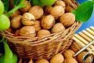 Продам грецкий орех целый - 50 кг - 30 грн\кг сухой орех урожай 2019 фото № 1