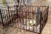 Изготавливаем кованные ограды от простых до сложных, низкие цены свое фото № 3