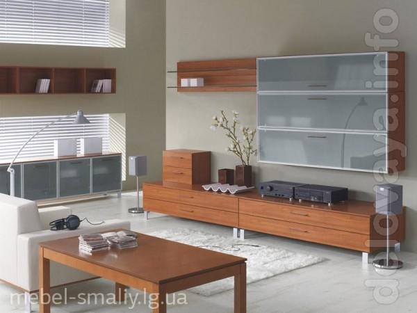 Изготавливаем и устанавливаем любую корпусную мебель под Ваши индивид