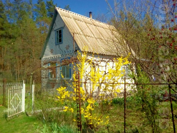 Продается дачный участок с домом. Местонахождение: Новоайдарский р-н,