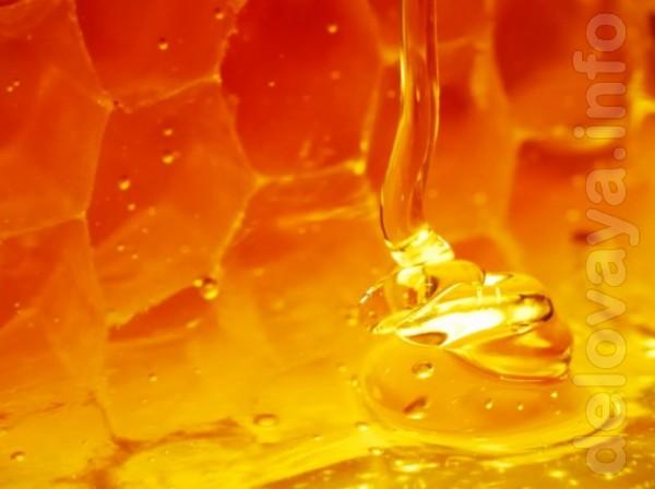 Мёд натуральный, подсолнух 85гр 1литр, разнотравие подсолнух 1 литр -