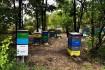 Мёд натуральный, подсолнух 85гр 1литр, разнотравие подсолнух 1 литр - фото № 1