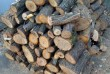 Продам дрова чурками