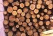 Продам дрова фруктовые 40 см и с разборки