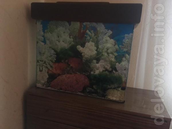 Продаю аквариум за ненадобностью. Аквариум на около 70 литров, трещин