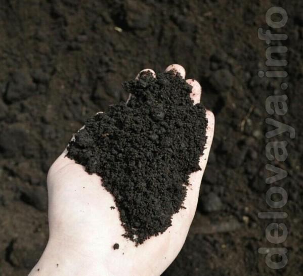 Продам песок, глина, щебень, жужалка быстрая и своевременная доставка