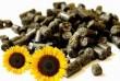 Пелет (пеллет) з лушпиння соняшнику - альтернативний екологічний вид
