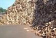 Лесхоз реализует дрова твердых пород. Чурки - 25, 35, 70, 100 см и ко