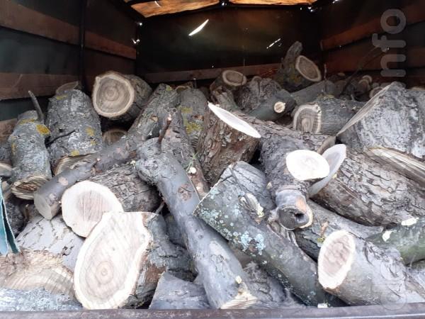 Продам дрова твёрдых пород 700грн/куб,фруктовые 600грн/куб чурками 35