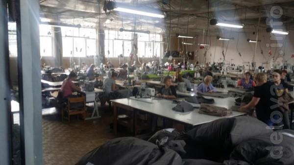Фирма Kam-Natur из Польши (г.Голюб-Добжинь) примет на работу женщин н