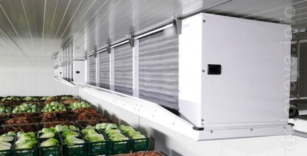 Овощехранилища. Холодильные и морозильные камеры. Группа Холодильных