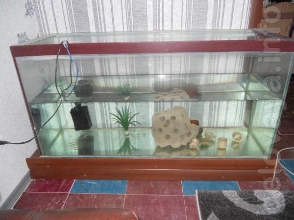 Продам аквариум на 280 литров ,головка Атман 202 и мочалка ,декор 2 ш