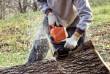 Валка деревьев любой сложности. Распил бревен, досок на  дрова. Рабо